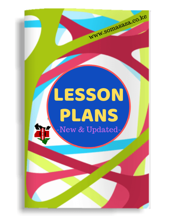 business studies lesson plan
